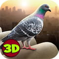 城市之鸟:鸽子模拟器   City Bird Pigeon Simulator 3D   v1.0